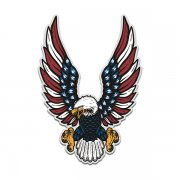 American Eagle Flag USA United States Patriot Sticker Decal