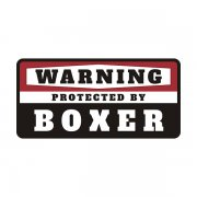 Boxer Protected by Warning Decal Guard Dog Vinyl Window Bumper Sticker