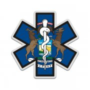 Michigan State Flag Star of Life MI EMT Paramedic EMS Sticker Decal