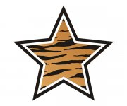 Star Tiger Animal Skin Print Sticker Decal