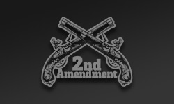 Second Amendment / 2A Stickers